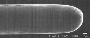 Mikroskopische Aufnahme einer Epilationsnadel.