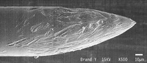 Mikroskopische Aufnahme einer zerklüfteten Epilationsnadel